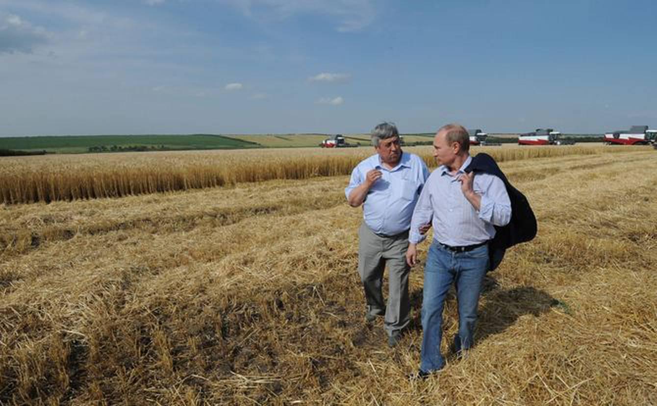 صادرات گندم؛ مؤلفهِ مهم در توسعه اقتصاد کشاورزیِ فدراسیون روسیه
